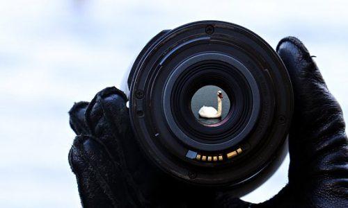 Digitale Bildbearbeitung mit Adobe Lightroom Classic 1 (AR-PHOT-14)