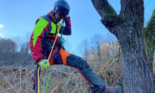 Travaux en toute sécurité lors de l'élagage d'arbres sur cordes (Module «SKT»)